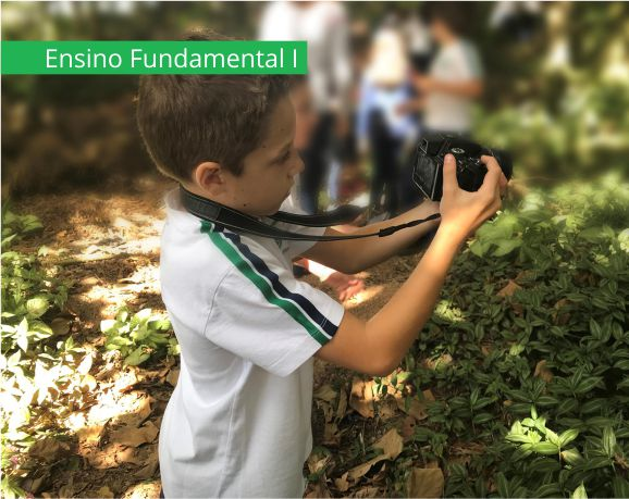 Ensino Fundamental 1 - Via Sapiens